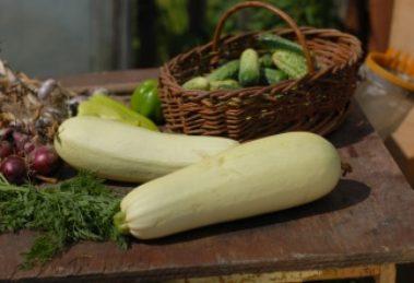 Letnja salata sa tikvicama i sirom