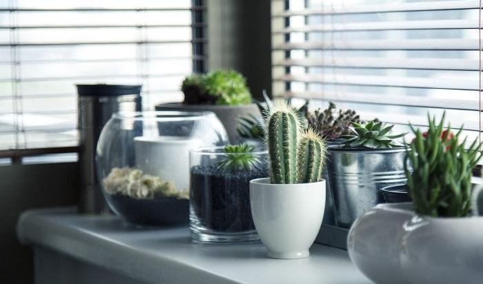 Rešite se negativne energije u stanu u 3 koraka