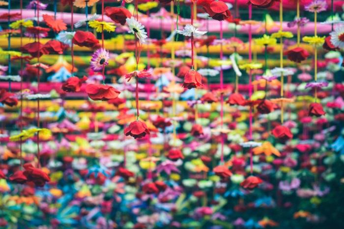 značenje boja šareno cveće