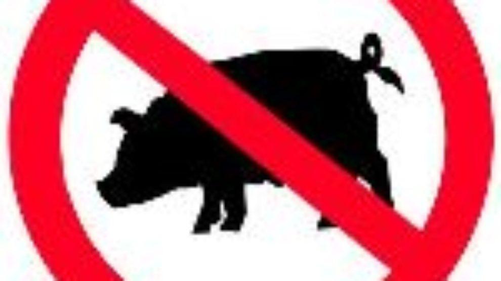 Pobedite svinjski grip