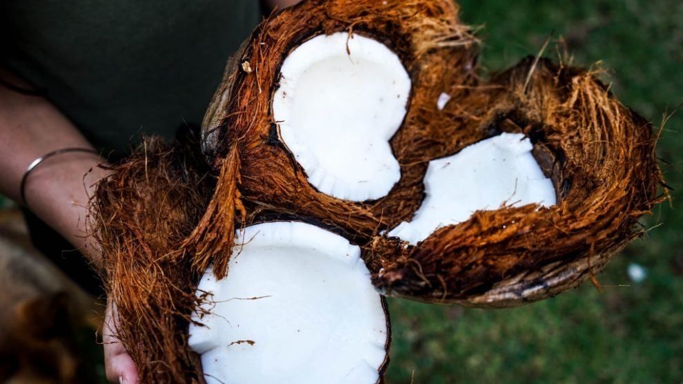 Šta sve možete sa kokosovim uljem