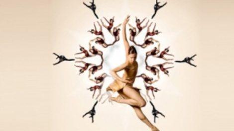 Vip i Organ Vlasti vas vode na Beogradski festival igre