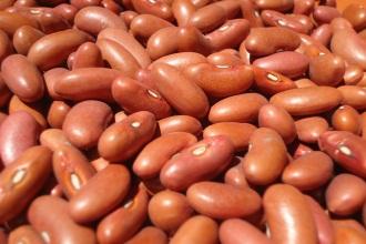slatke bombice od pasulja