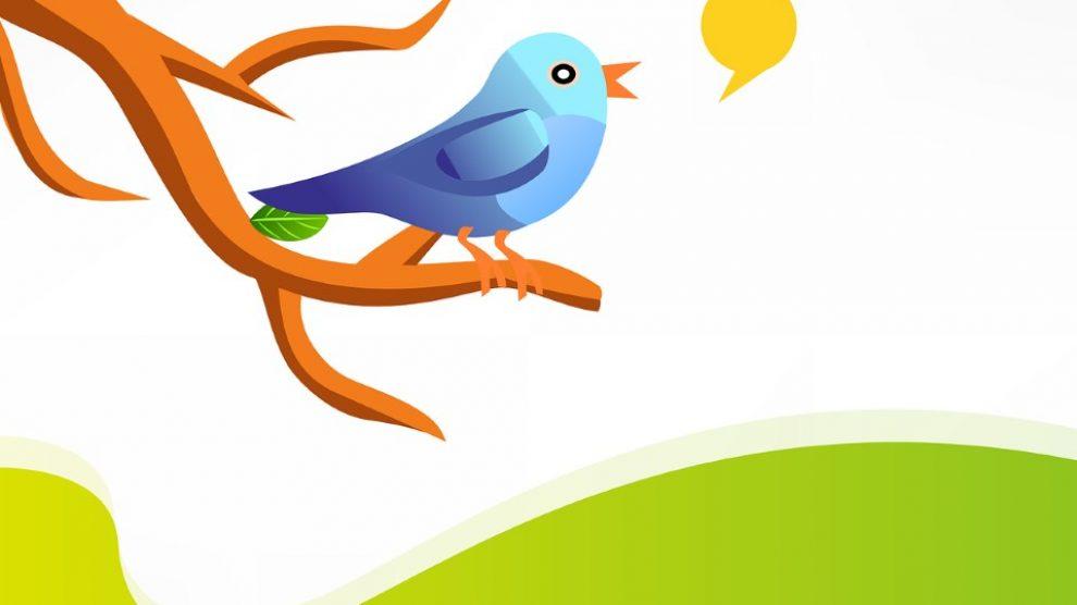 Twitter bonton