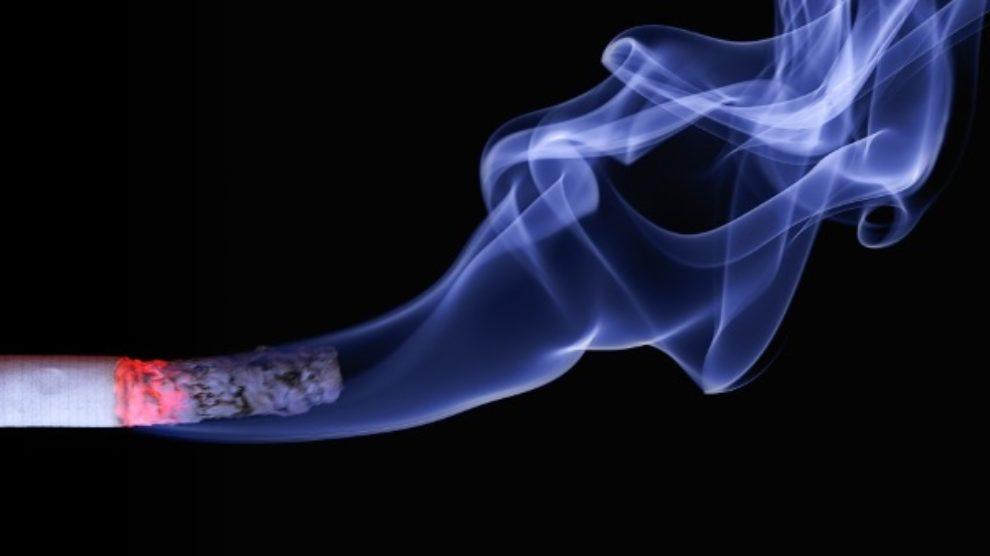 Nacionalni dan bez duvanskog dima 2013