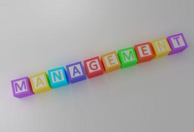 Šta radi menadžer?