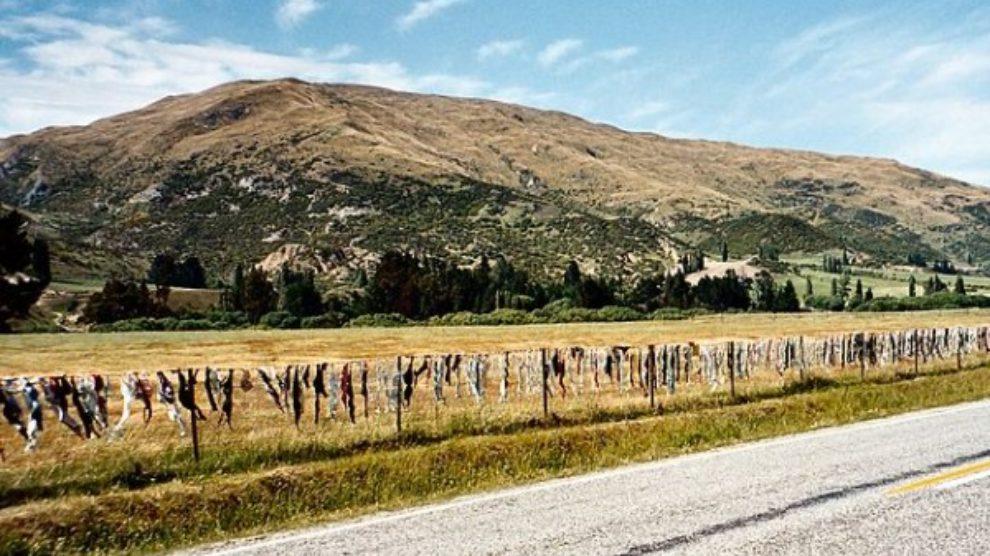 Dolina brushaltera na Novom Zelandu