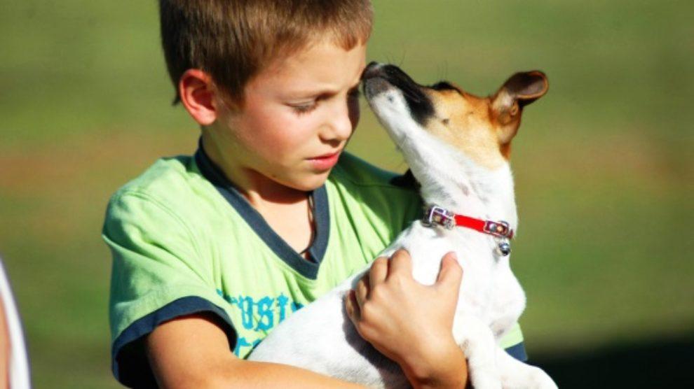 Da li se slažu psi i deca?