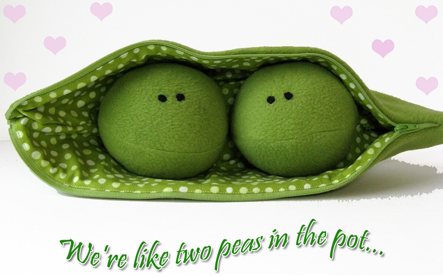 two-peas-in-the-pot