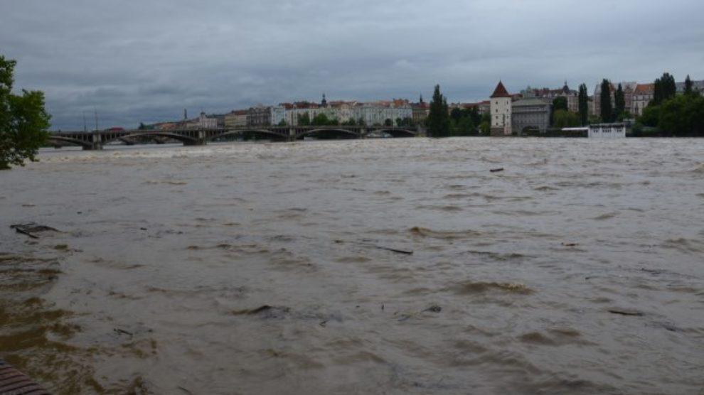 Šta posle poplava?