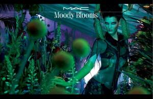 moody_blooms_by_mac_m