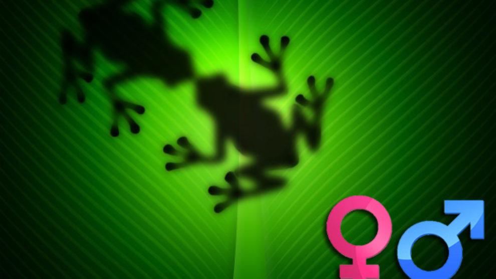 12 mitova o seksu!