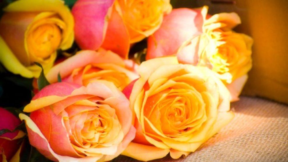 Zašto izabrati dostavu cveća za savršen poklon?