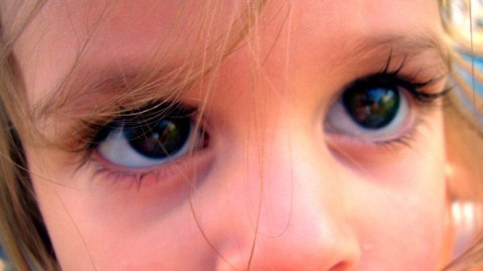 5 namirnica za bolji vid