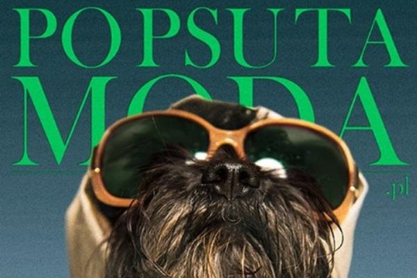 Visoka moda pomaže napuštenim psima!