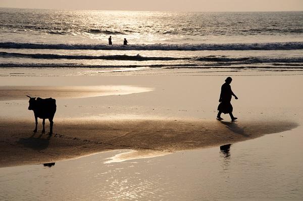 indija-za-početnike-humanitarna-izložba-fotografija-v