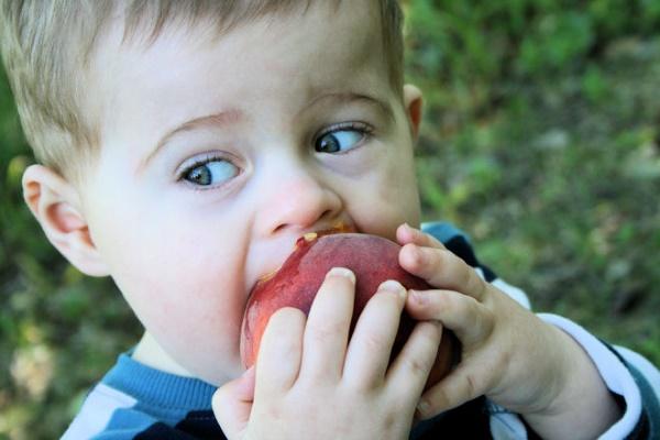 jamieva-strategija-protiv-dečije-gojaznosti-v2