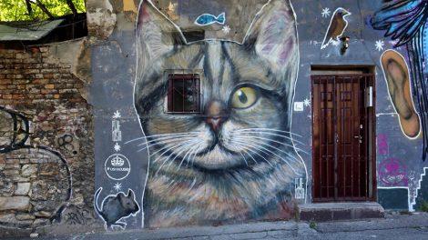 Steet Art Belgrade – knjiga o beogradskim grafitima