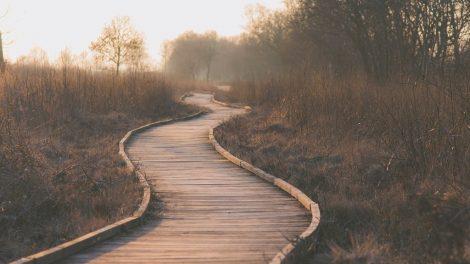 Kako dostići isceljenje na putu do ozdravljenja?