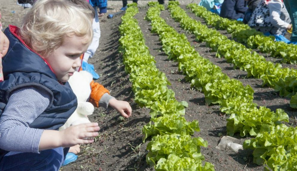 Mali poljoprivrednici – za zdravije navike u ishrani mališana