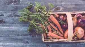 Preporučeni dnevni unos voća i povrća