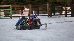 Jačanje dečijeg imuniteta uz pomoć prirode