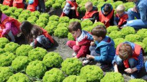 Projekat mali poljoprivrednici poziva na novo druženje