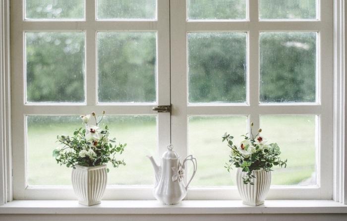 saveti-za-dekoraciju-stana-biljke-na-prozoru