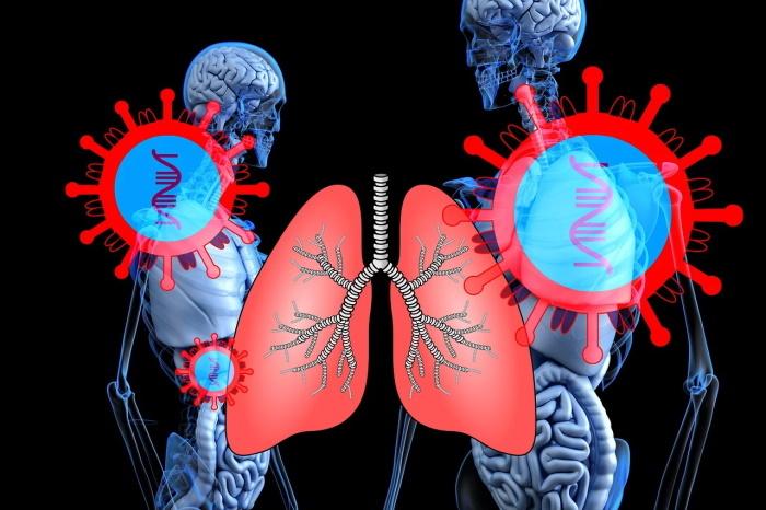 izloženost korona virusu utiče na pluća