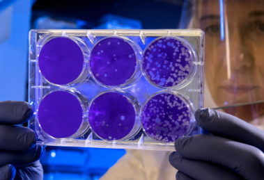 Poznati o korona virusu – ako nisu lekari, slobodno ih zanemarite